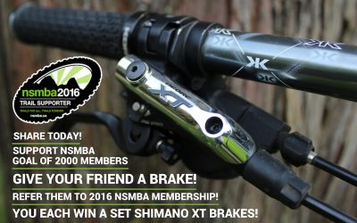 Give your Friend a Brake!