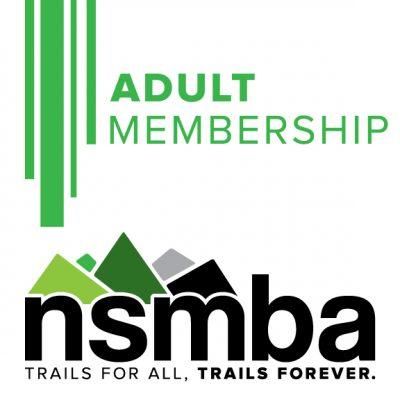 nsmba-_-icon-_-adult