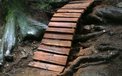 February Trail Update
