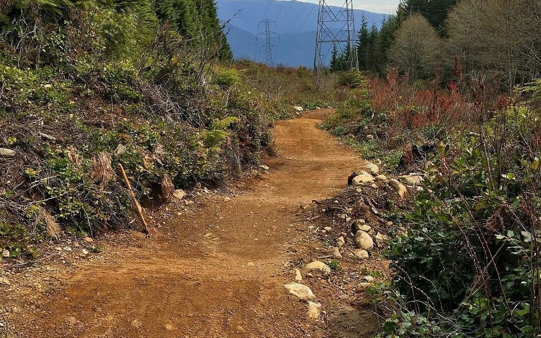 May Trail Update