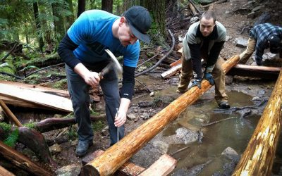 How to help a Trail Builder