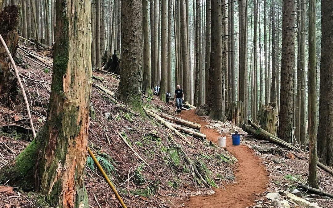 June Trail Update