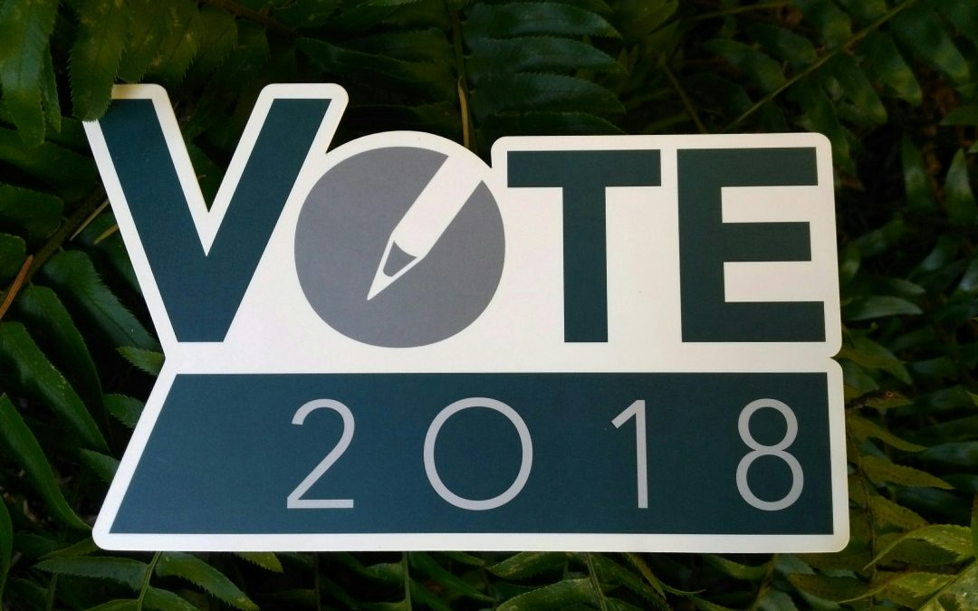 DNV Election – Questions for the Candidates