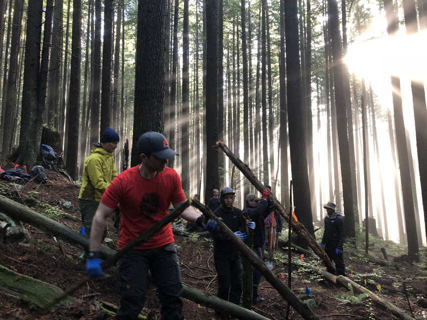 A group of volunteers clearing logs and branches from where a new trail will be built. Beautiful rays of light are shining through the trees behind them.
