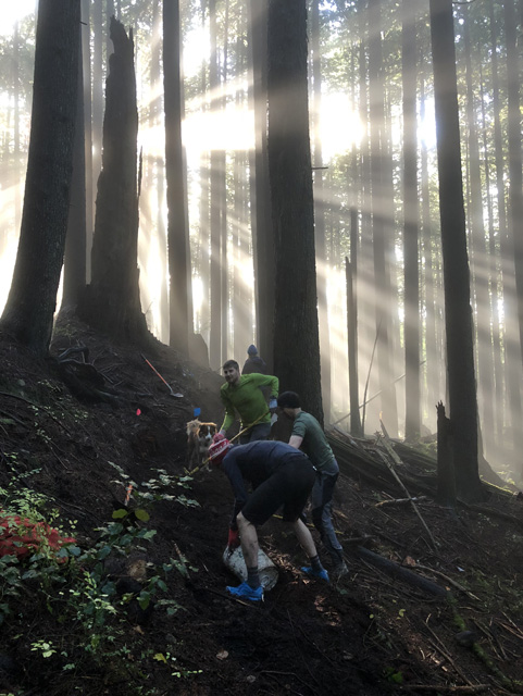 Volunteers are digging dirt to create the new trail