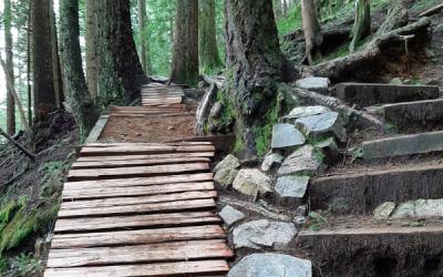 February 2020 Trail Update
