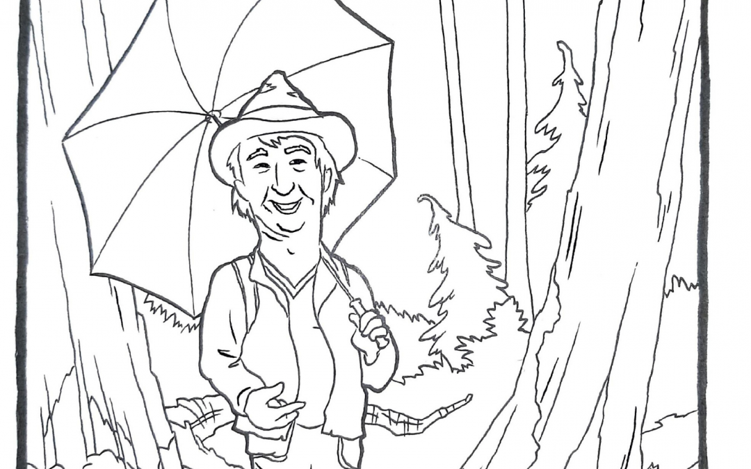North Shore Colouring Pages