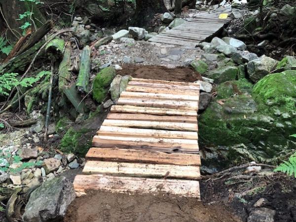 July 2020 Trail Update