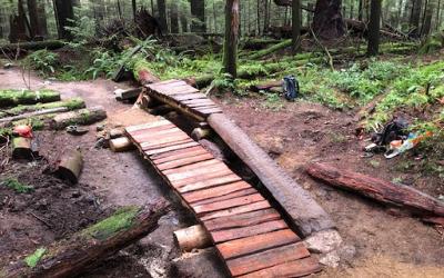 February 2021 Trail Update