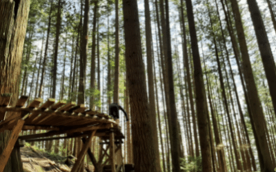 Trail Jargon of the Month – Dialed