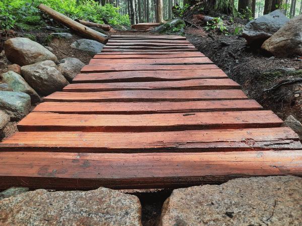 August 2021 Trail Update
