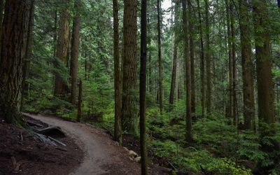 District of West Vancouver partners with British Pacific Properties and North Shore Mountain Bike Association to create and maintain trails in the Upper Lands